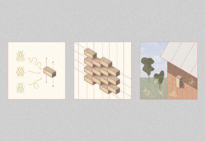 grafismo del proyecto de hotel para insectos